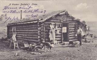 Western Bachelors HOme old west scene cowboy Postcard