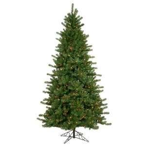 Lit Colorado Pine Christmas Tree   Multi Color Lights
