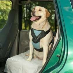 Bergan Dog Auto Car Harness With Tether Size Large