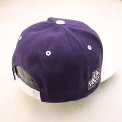 TCU HORNED FROGS NCAA SNAPBACK HAT CAP HEADLINER PURPLE/WHITE