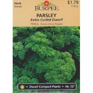 Burpee Extra Curled Dwarf Parsley   750 Seeds Patio, Lawn