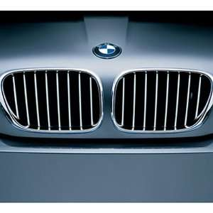 BMW Titanium Grille Right Front Radiator Grille for vehicles produced