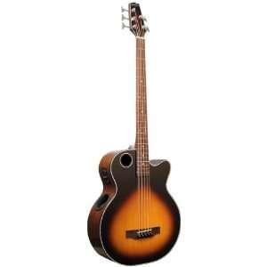 Boulder Creek Guitars EBR1 TB5 5 Strings Acoustic Electric