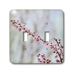 Patricia Sanders Flowers   Arrival of Spring  Cherry Blossom Flowers