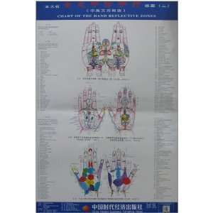 Wang holographic great hand therapy hand clinic charts (2