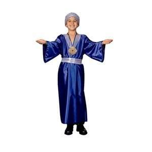 Wiseman (Blue)   Medium Child Costume Toys & Games