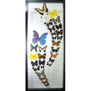 Double Wave Mounted Butterfly Wall Decor