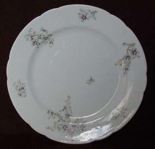 1908 LEONARD VIENNA AUSTRIA PORCELAIN CHINA PLATE