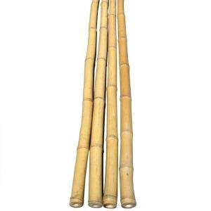 in. D x 6 ft. H Bamboo Poles Natural 25 Poles Bundled HDD BP01 at