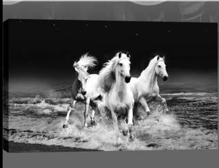 LARGE HORSES CANVAS ART PICTURE BLACK & WHITE 34x20