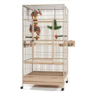 Large Wrought Iron Parrot Cage for Large Birds