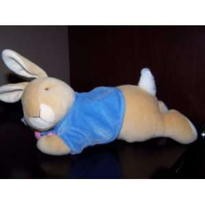 Peter Rabbit Wind Up Musical Plush Bunny